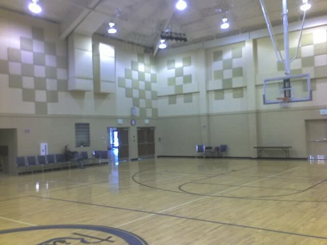 Echo Eliminator Used In Unique Pattern To Greatly Reduce School Gym Acoustical Surfaces