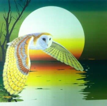 Custom Silk Metal Graphic – Owl